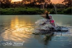 nola-meiring-photography01