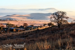 nola-meiring-photography09