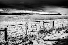 nola-meiring-photography14